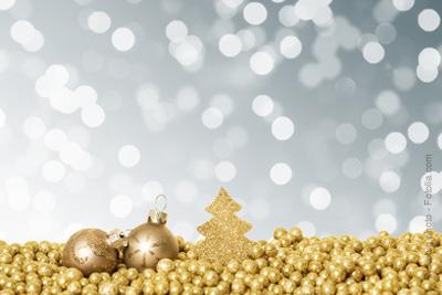 Vacances de Noël 2018/2019