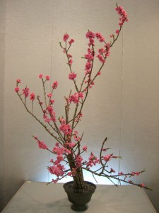 ikebana versailles